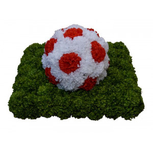Football [Silk]